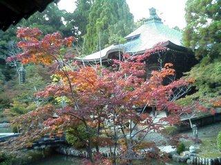 清涼寺 2