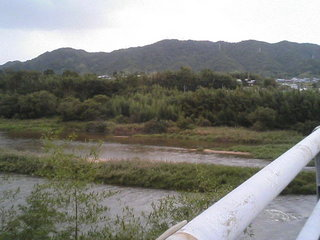 木津川を望む写真1