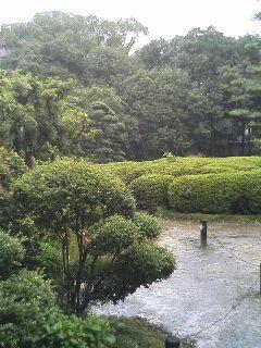 鴻池新田の写真1