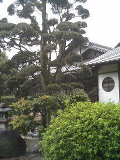 鴻池新田の写真2