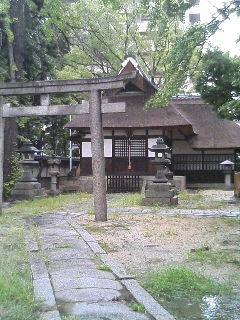 鴻池新田の写真7