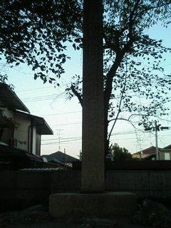 長岡宮跡 その2